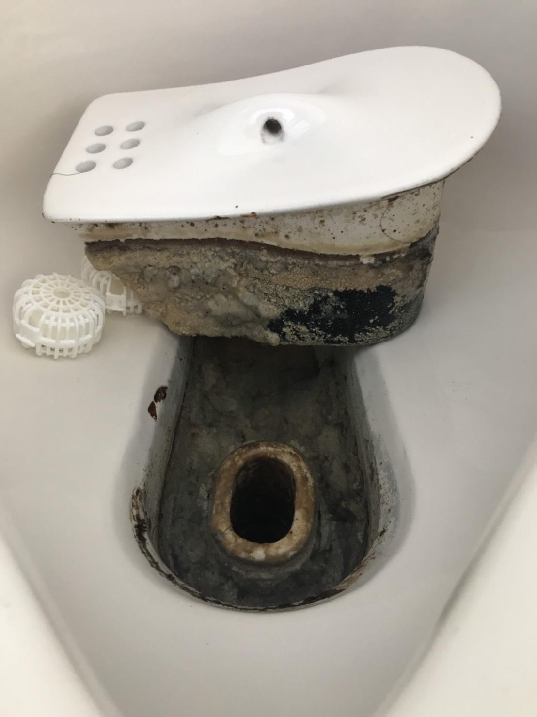 トイレ尿石除去作業 滋賀県蒲生郡 T株式会社様