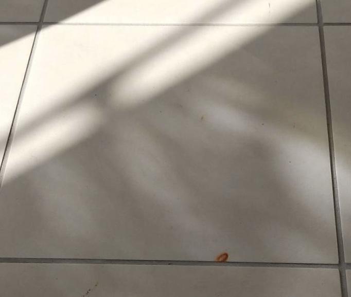 床洗浄作業・錆取り作業 静岡県浜松市 Y株式会社様
