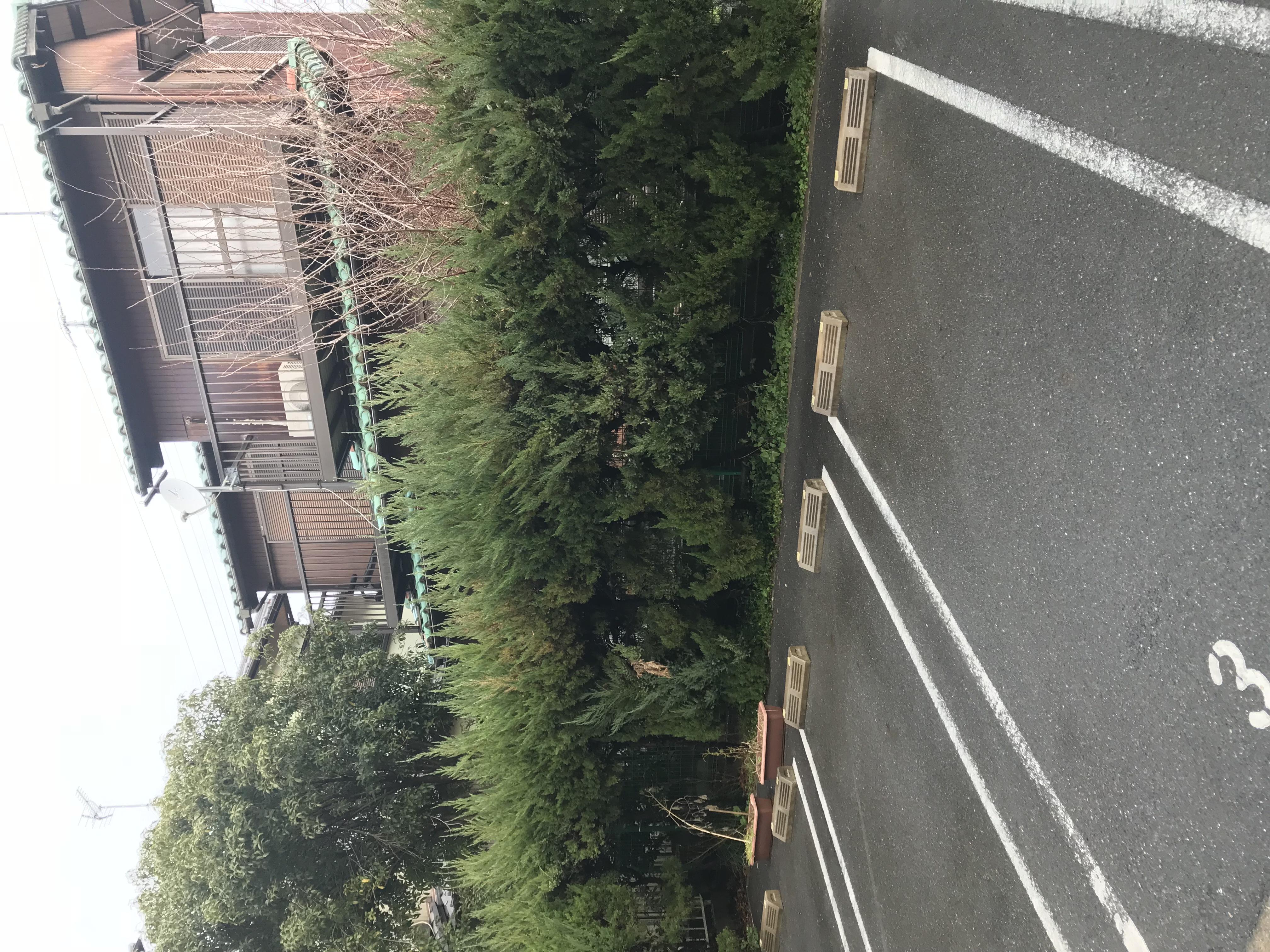 植栽選定作業 愛知県名古屋市 S株式会社様